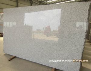 G603 Light Grey Granite Slab (G603, G654, G682, G687, G664) pictures & photos