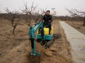 Garden Mini Crawler Excavator Ce pictures & photos