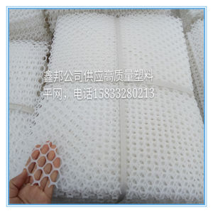 Polyeter Mesh / Wire Mesh pictures & photos