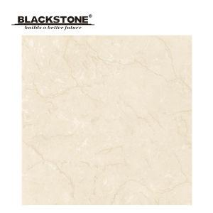 500X500 Super Glossy Polished Porcelain Soluble Salt Floor Tile (JA5013) pictures & photos