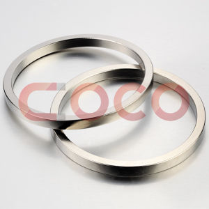 Ring Neodymium Permanent Magnet with RoHS Certification pictures & photos