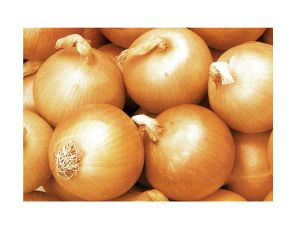 Fresh Vegetable Food Yellow Onion
