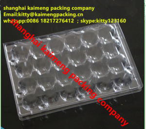 4X6 24units Clear Plastic Quail Egg Collection Trays pictures & photos