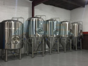 Microbrewery Equipment Beer Equipment (ACE-FJG-T4) pictures & photos