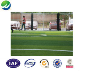 Four Tone Synthetic Leisure Grass Wy-02 pictures & photos