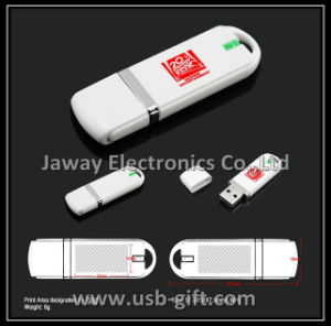 Promotional 2GB Plastic USB 2.0 Memory Stick Flash Disk