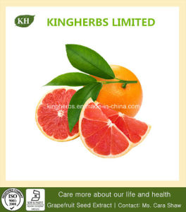 Grapefruit Seed Extract 30% Total Flavonoids pictures & photos