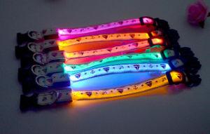 Popular Sailor Print LED Dog Collar with USB Charger