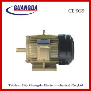 CE SGS 7.5kw Triple-Phase Air Compressor Motor pictures & photos