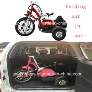 3wheels Trike Electric Scooter with Ce pictures & photos