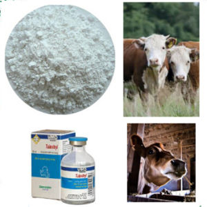 98% CAS 217500-96-4 Tulathromycine / Tulathromycin a for Antibiotic