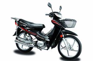 110CC Cub Motorcycle (SP110-2)