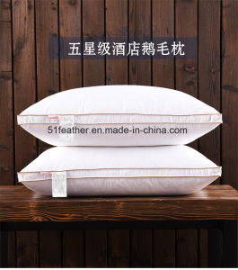 Most Comfortable Goose/Duck Down Feather Pillow with White Side pictures & photos