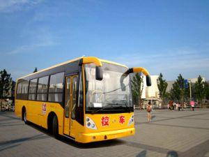 Changan Brand 56-74 Seat School Bus pictures & photos