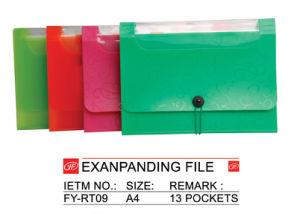 Exanpanding File - 3