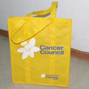 Non-Woven Bag (HR-NWB111) pictures & photos