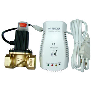 Gas Leak Detector With Solenoid Valve