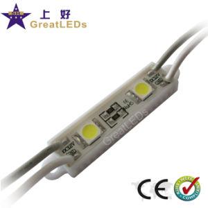 LED Module/SMD LED Module (GFT4011-2X 5050)