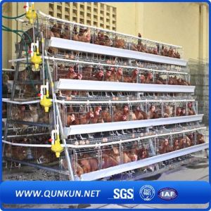 Strong and Durable Chicken Cage for Sale pictures & photos