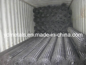 Plastic Geogrid pictures & photos