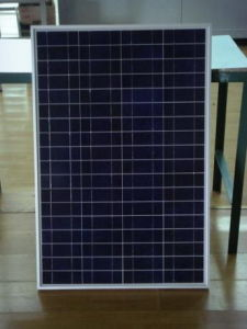 Polycrystalline Solar Module (CNSDPV-90(P)) pictures & photos