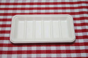 Biodegradable Disposable Tray (HR-01)
