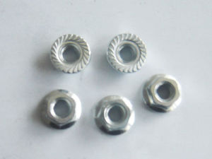 DIN 6923 Hexagon Flange Nut pictures & photos
