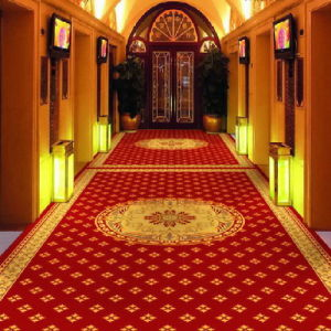 High Quality & Different Materials Wilton Carpet (YHZL097)