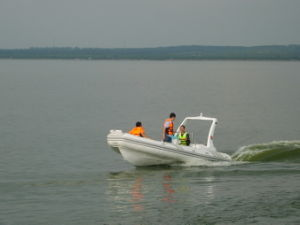 Rib Boat / Rigid Inflatable Boat (Rib580B) - Very Hot pictures & photos