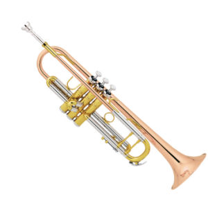 High Grade Trumpet (TR-410) pictures & photos