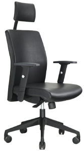 Boss Office Chair pictures & photos