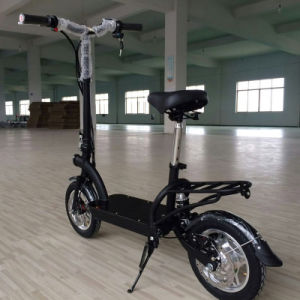 EEC Type New Foldable Bike 300W Electric Scooter Es8002 pictures & photos