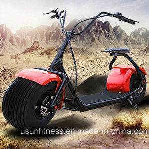 Fat Tire Two Wheel Electric Scooter with Bluetooth pictures & photos