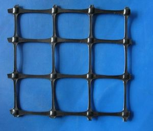 Plastic Modulus of Polyester Geogrid HDPE Reinforcement Geogrid pictures & photos