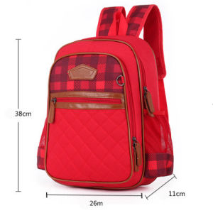 Nylon Polyester Backpack School Bag for School Students pictures & photos