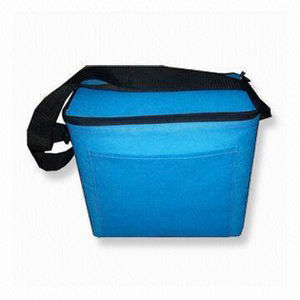 Custom Outdoor Picnic Fitness Insulated Lunch Cooler Bag (LJ-369)