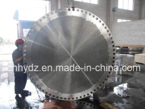 Hot Forged Super Duplex Stainless Steel Tube Sheet pictures & photos