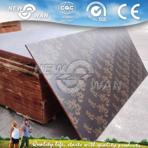 China Film Faced Plywood Prices / Construction Plywood Sheet for Formwork pictures & photos