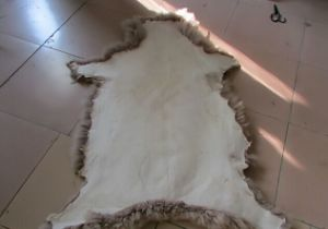 /Best Quality Cheap Price Sheep Fur Skin From Factory pictures & photos