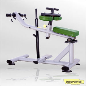 Seated Calf Raise Machine Fitness Machinery Price pictures & photos