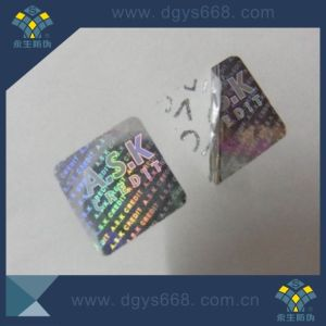Honeycomb Tamper Evident Laser Sticker pictures & photos