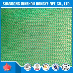 PE Construction Safety Net, Scaffod Net, Debris Net, Shading Net pictures & photos