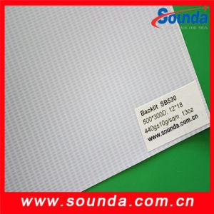 500*300d Backlit PVC Flex Banner pictures & photos