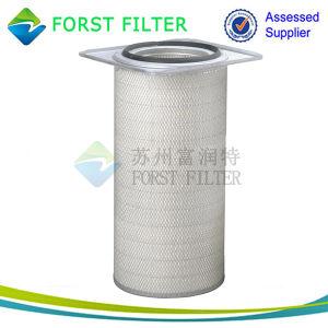 Forst Donaldson Air Filter Element pictures & photos
