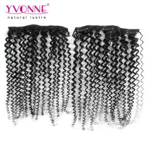 Brazilian Kinky Curly Clip in Human Hair Extension pictures & photos