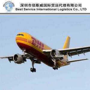 Instruction Express Agent (DHL, UPS, FedEx, TNT) DHL Agent Service pictures & photos