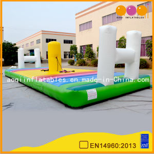 Inflatable Sports Games Interactive Games (AQ1713) pictures & photos