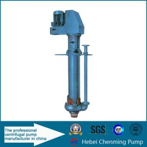 Electric High Viscosity Transfer Corrosive Engine Products Solids Pump pictures & photos