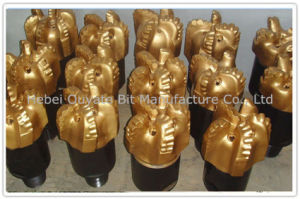 "12 1/4"" Hard Rock Oil Well PDC Drill Bit pictures & photos"