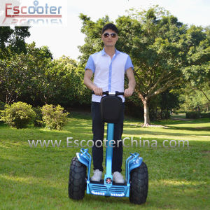 off Road Two Wheel Electric Scooter with Powerful Motor pictures & photos